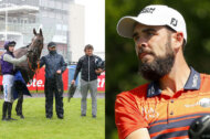 A Successful Week for SoftCo Brand Ambassadors